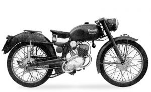 leoncino normale 1952