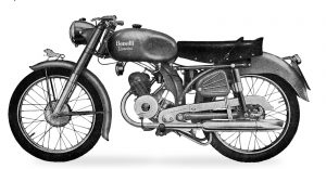 leoncino normale 2T 1956